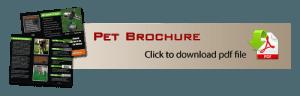 Marketing Pet Brochure